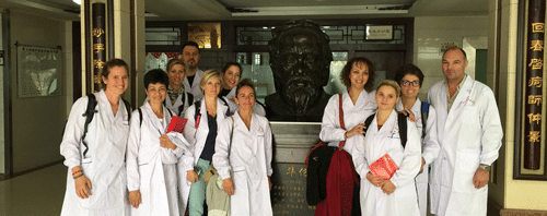 Formation médecine chinoise Genève
